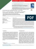 jurnal print copie.pdf