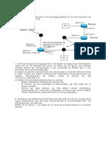 EjercicioDeSubredes_1.pdf