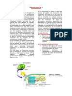 Lab.8-Fotosíntesis.pdf