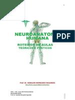 Roteiro-da-aula-de-Neuroanatomia-Professor-Geraldo-Morgado-Fagundes.pdf
