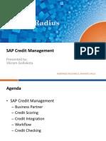 sap_credit_management_overview.pdf