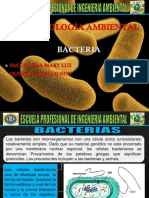 bacteriass.pptx