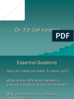 Cell Transport Revision
