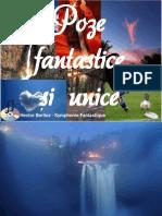 Poze Fantastice Și Unice (2)