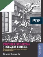 piydh_busaniche.pdf