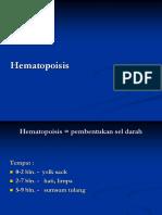Mar06-08 (4) Hematopoisis