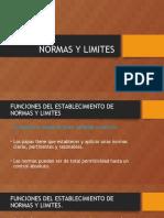 Presentación Normas y Limites