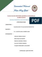 INFORME-PROYECTO-DE-INVERSION-TERMINADO.docx