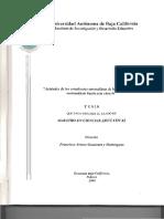 Tesis-Completa-Arturo-Gamietea1.pdf