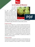 158-El-Calcio-en-el-Manzano.pdf