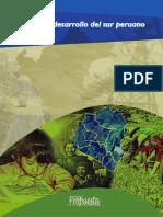 IIRSA_desarrollo_sur.pdf