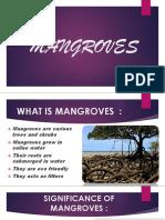 PPT MANGROVES.pptx