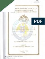 PAREDES RUIZ ZOILA YULEYSI(FILEminimizer).pdf
