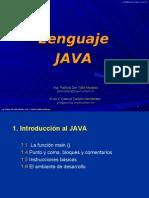Curso Lenguaje JAVA(Modificado 02-2010)