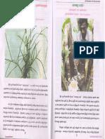 மருந்து மூலிகைகள்.pdf