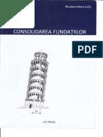 2009, Consolidarea Fundatiilor, A. Popa, N. M. Ilies