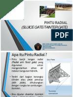 367360036-Pintu-Radial