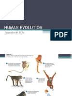 Manap Trianto - Evolusi Evolusi Manusia