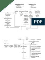Pathophysiology of Stroke
