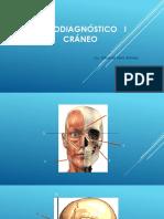 Craneo Planos y Puntos