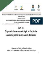Diagnosticul-anatomopatologic-in-afectiunile-aparatului-genital-la-carnivorele-domestice.pdf