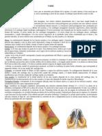 Nariz cir plast.pdf