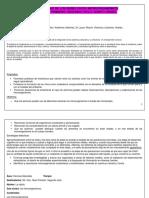 Planificacion Didactica Nnk (1)