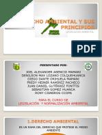 Derecho Ambiental_Lozano