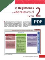 SERVIR - El servicio civil peruano - Cap2.PDF
