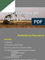 Yacimientos Gas & Petroleo # 1