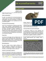3 Medicamentos Perigosos Para o Gato