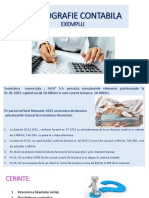 MONOGRAFIE_CONTABILA_EXEMPLU.pdf
