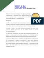 55223116-PRUEBA-DE-VDRL.docx
