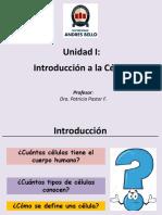 Clase 1 Introducción a La Célula
