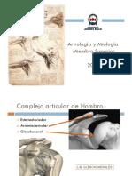 Artromiologia Miembro Superior 2012