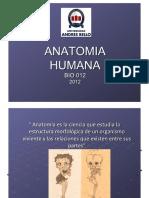 Clase 1 y 2 Generalidades.pdf