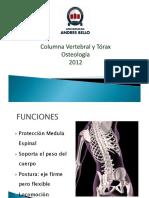 Clase 3 Columna Osteo