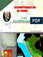 presentacion ecocistema