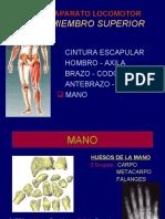 5-mano-100406220703-phpapp01.pdf
