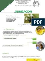 Polinizacion Final