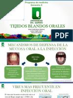 Tejidos blandos orales