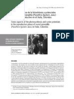 Fotosintesis taller.pdf