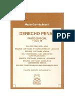 Derecho Penal Parte Especial Tomo III Ed 2010