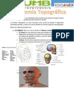 Anatomia Topográfica