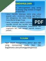 Ppt Jamur Yang Menyerang Ikan By. Anang & kawan2