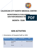 Sdn Report Template