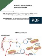 Tecnicas DNA Recombinante ppt