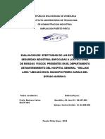 Evaluacion de Efectividad de Las Estrategias de Seguridad Industrial Enfocadas a Los Factores de Riesgos Fisicos