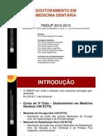_FMDUP_-_Apresentacao_DMD_2010-2013_VF