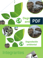 Degradación ambiental.
